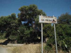 sa-mesana_x1216_50