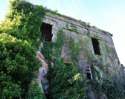Saponificio LedàVAI ALLA GALLERY